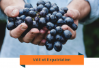 VAE en expatriation